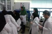 کارگاه عملی استخراج DNA از خون ، انجام PCR و الکتروفورز - شعبه آمل